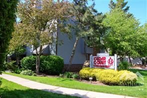 Cedar Court
